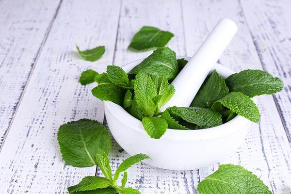 Remedy #3: Mint leaves