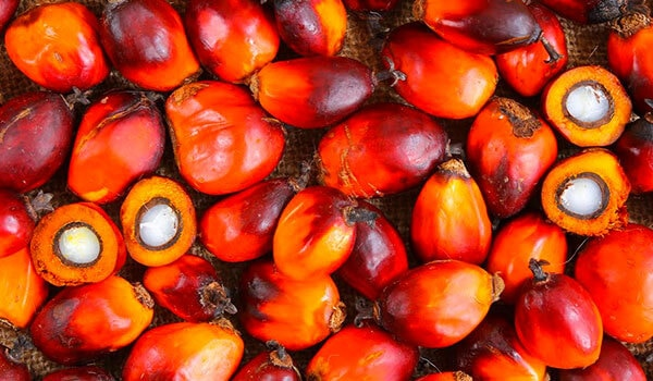 3 beauty BENEFITS OF RED PALM OIL