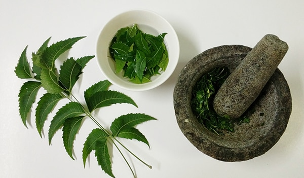 Skin, hair and health benefits of eating neem leaves on an empty stomach
