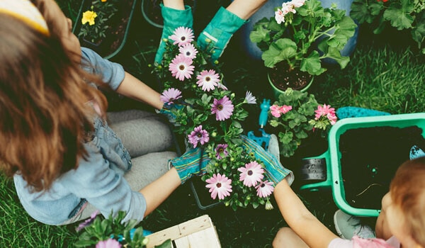 6 budget-friendly hobbies to keep your brain healthy (and wallet intact)