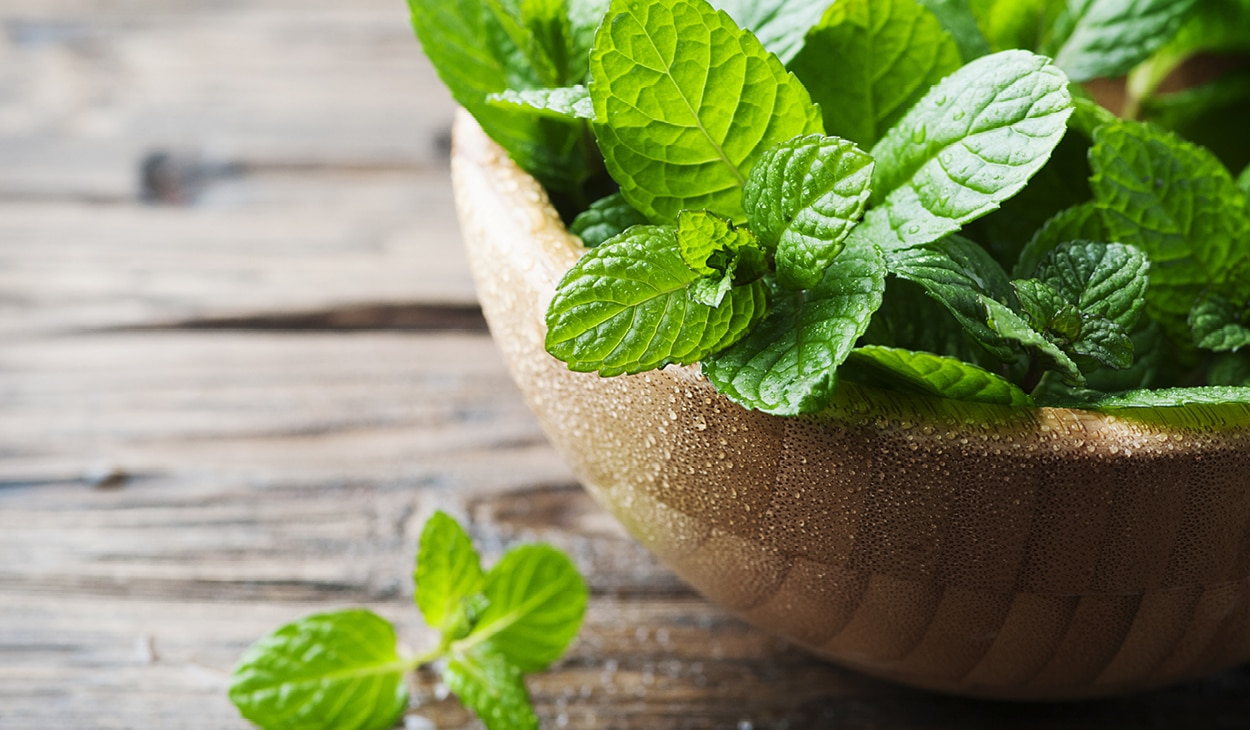 Add these 7 DIY mint face packs to your skin care routine for glowing skin!
