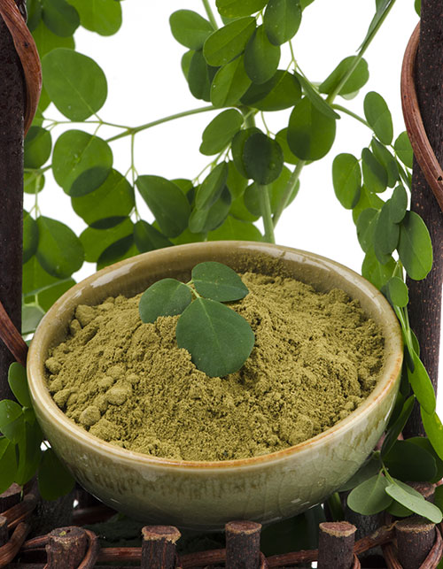 7 REASONS WHY MORINGA IS THE NEW SUPERFOOD YOU NEED TO INCLUDE IN YOUR DIET
