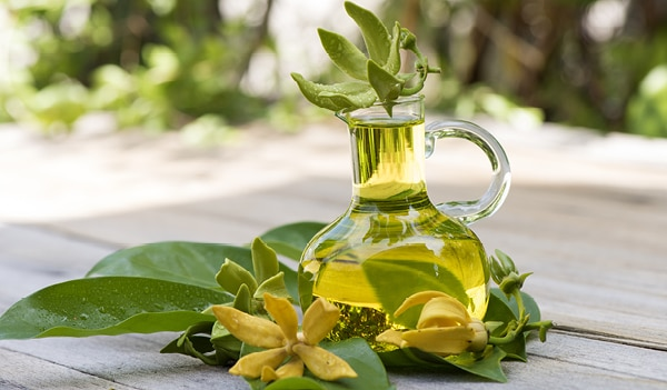 Ylang Ylang Oil Benefits: the magic oil your skincare needs
