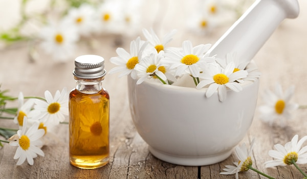 Surprising benefits of chamomile oil for skin, health and hair