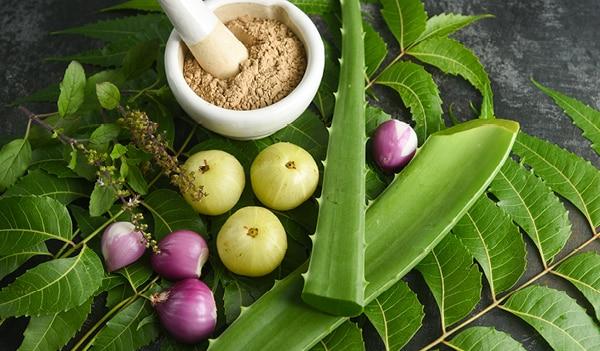 Ayurvedic Treatment For Dandruff: 5 Natural Remedies That Work