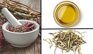 Coneflower, oil and white tea – fight hair loss with these three ingredients