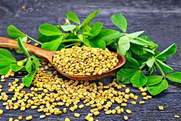 Fenugreek for your face
