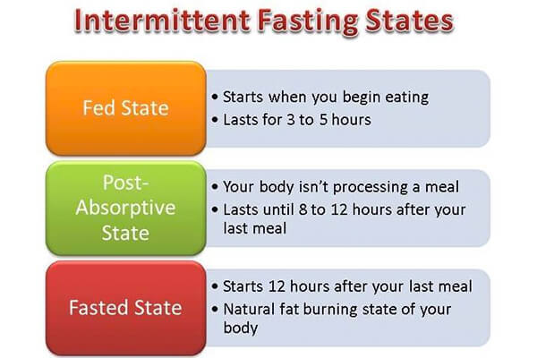 Fed state and fasted state