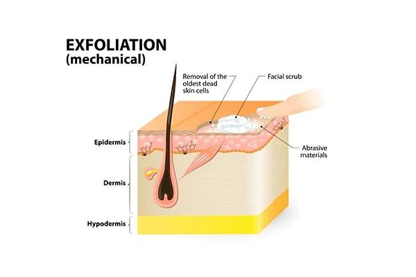 The way to exfoliate dry skin