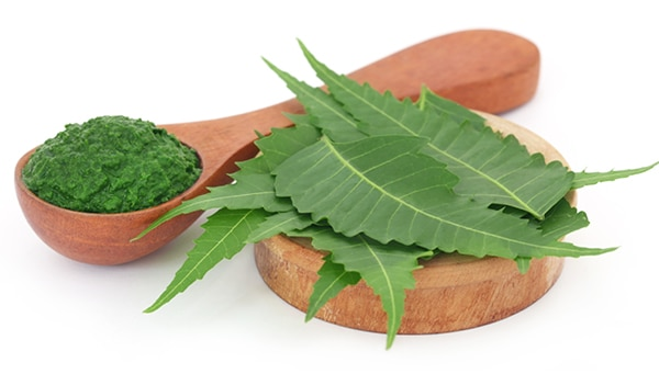 Have You Tried Using Neem For Acne? Here Are 6 Effective Ways To Do So