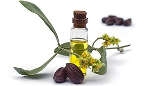 5 beauty benefits of Jojoba Oil