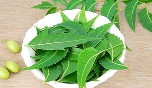 7 reasons why Neem is a wonder ingredient for your skin…