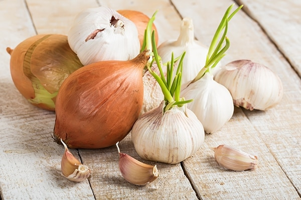 Onion or garlic juice
