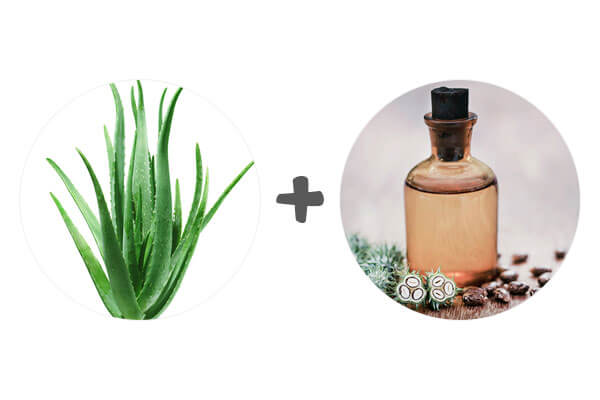 Aloe Vera and Castor Oil for Hair Growth
