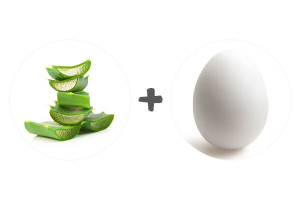 Aloe Vera and Egg for Hair Growth