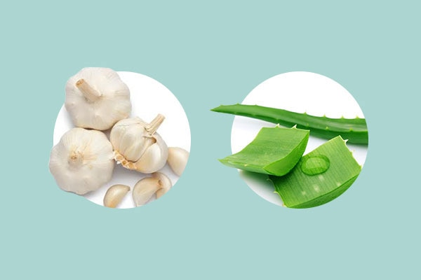 Turn to aloe vera and garlic