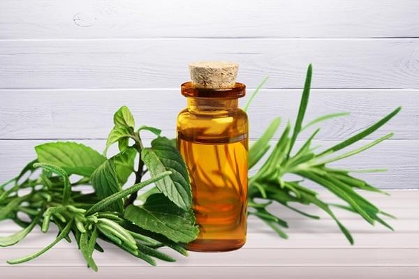 Treat bacne with tea tree oil