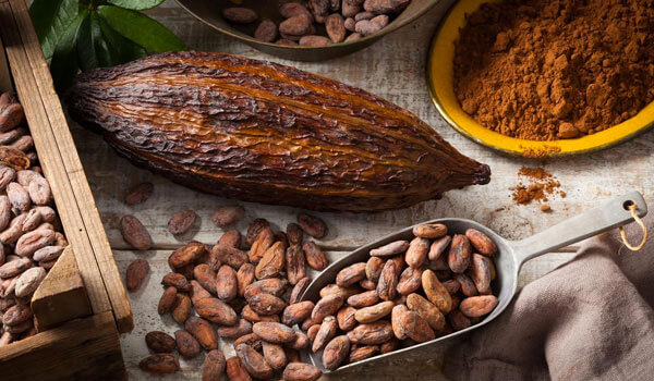 BENEFITS OF COCOA FOR HEALTHY SKIN