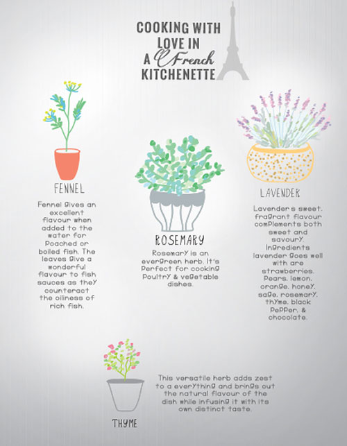 HERBS FROM AROUND THE WORLD TO PEP UP YOUR FOOD