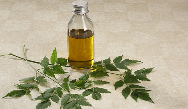 HOW TO USE NEEM TO GET HEALTHY, LONG HAIR