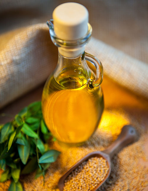 MAKE MUSTARD OIL THE NEW ADDITION TO YOUR HAIR AND BEAUTY ROUTINE