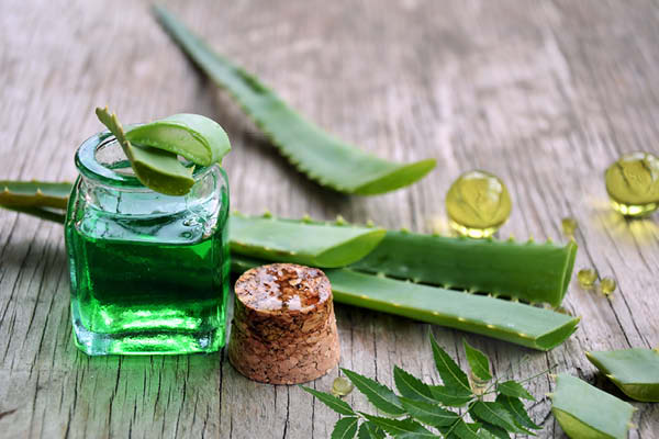 For pimples and breakouts – Aloe Vera + Neem