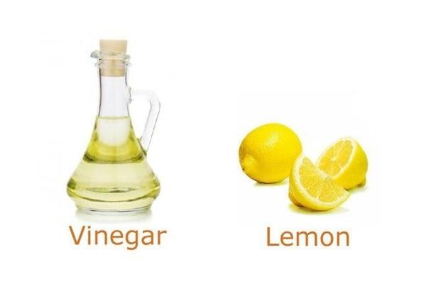 Mixture of lemon and vinegar