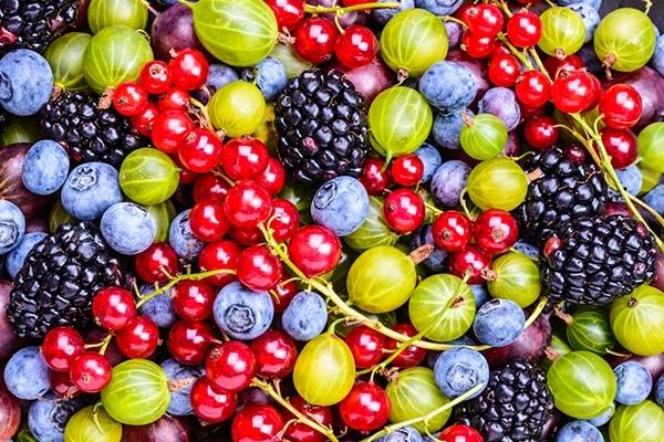 Eat antioxidant rich foods
