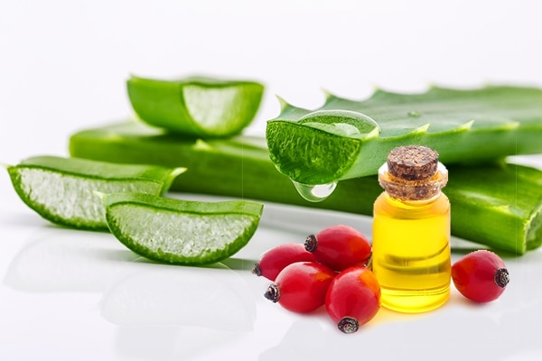 Aloe vera and rose hip oil
