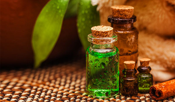 How to use tea tree oil for your skin