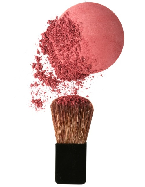 THREE QUESTIONS ABOUT THE ROSE BLUSH WITH SWARNALEKHA GUPTA