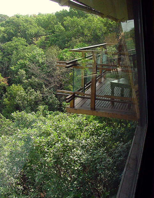 LONG WEEKEND ALERT – 4 INCREDIBLE TREEHOUSES TO VISIT THIS SUMMER